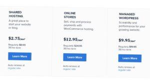top 10 best web hosting for wordpress in 2021, best wordpress hosting, best wordpress hosting in 2021, top 10 hosting, best hosting site